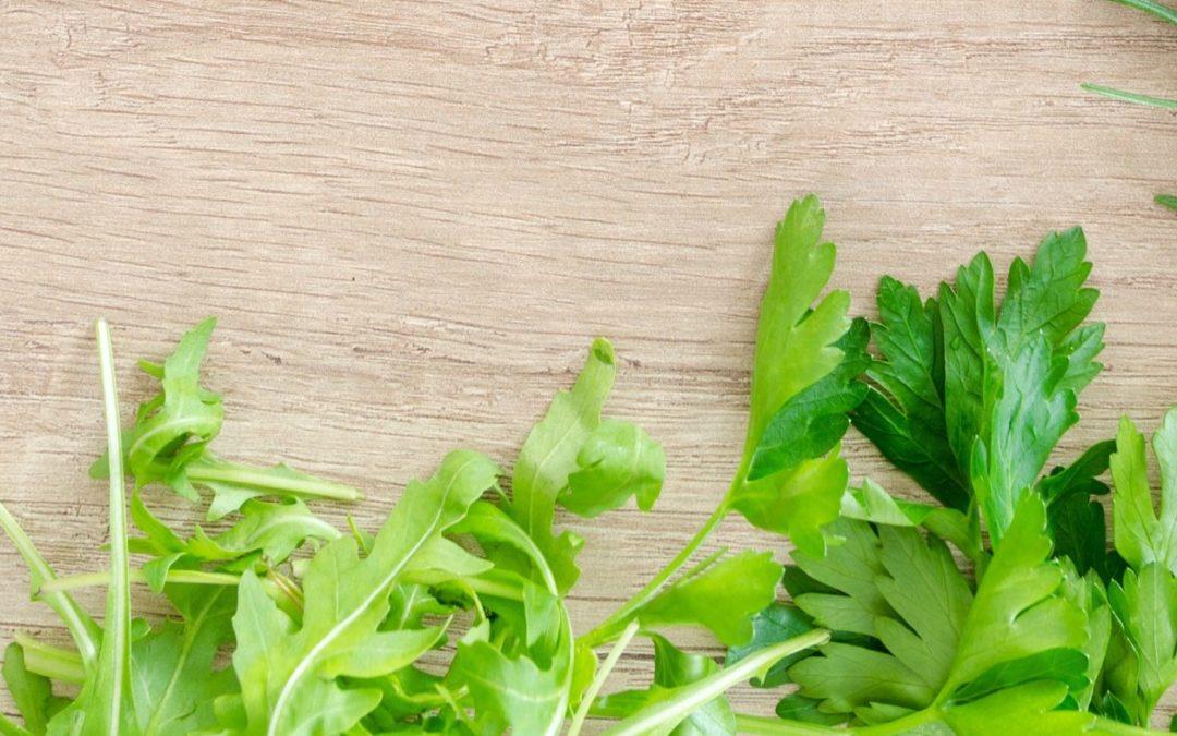 Medikamente mit natürlichen Inhaltsstoffen: Pflanzen für die Psyche